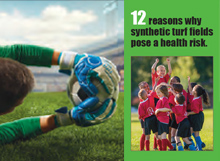 12 Reasons Why Synthetic Fields Pose a Health Risk
